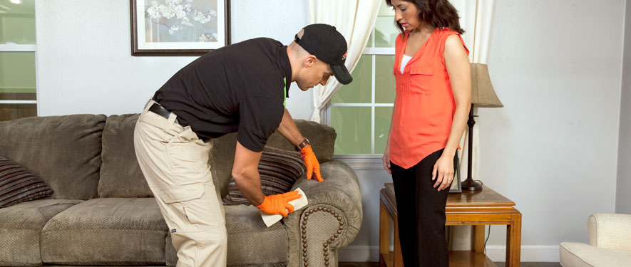Willoughby, OH carpet upholstery cleaning